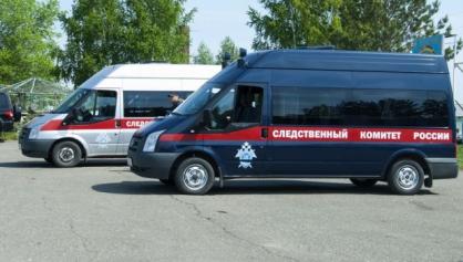 Стали известны подробности убийства 11-месячной девочки в городе Бийске
