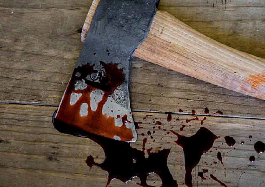 Резня в Ульяновске: подросток зарубил всю свою семью и покончил с собой