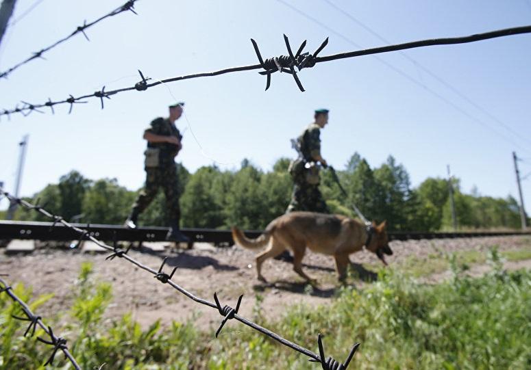 Алтайские пограничники задержали очередного нарушителя границы