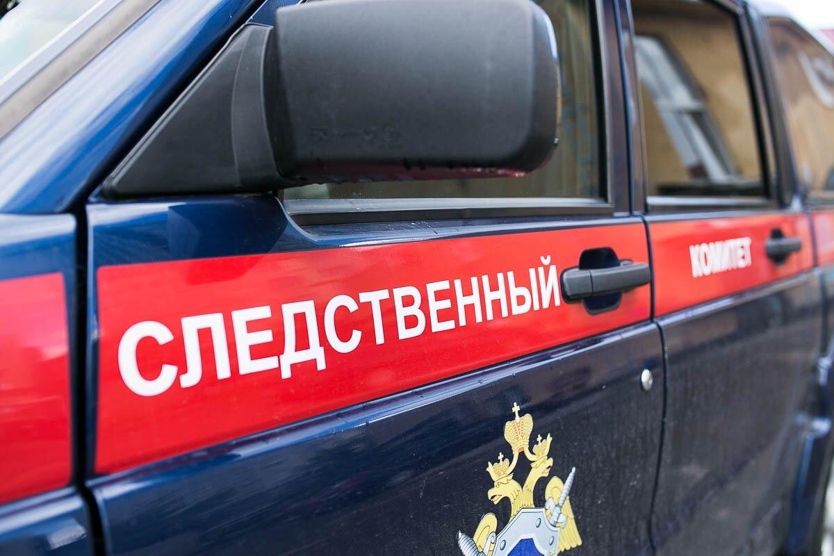 Следком проводит проверку по факту избиения девочки в Рубцовске