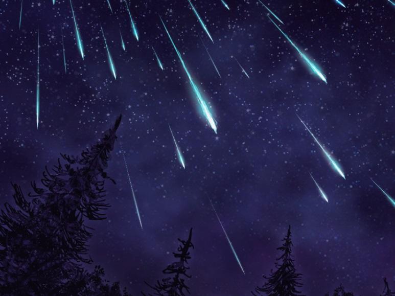 Звездопад пройдет в небе над Алтайским краем сегодня ночью