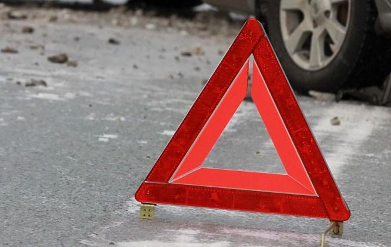 В Алтайском крае в ДТП погибли два пожилых человека