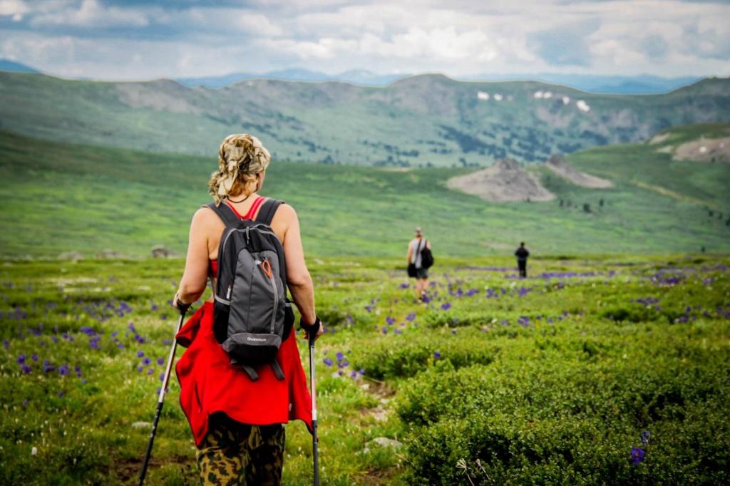 Стратегические направления развития туризма обсудили в Алтайском крае