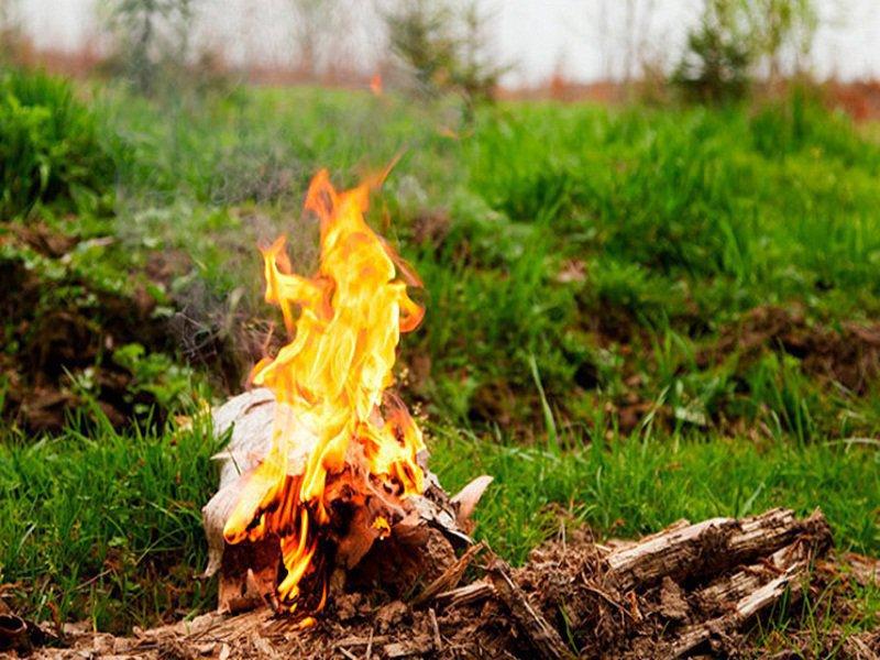 В Алтайском крае введен особый противопожарный режим