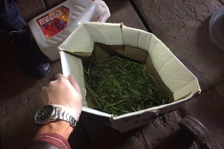 5 кг марихуаны хранил у себя дома мужчина в Рубцовске