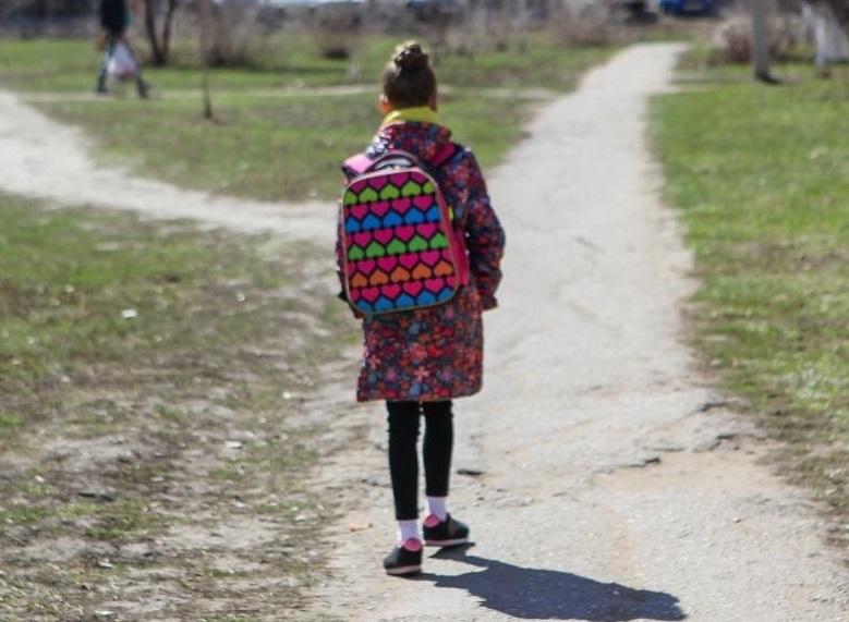 ОНФ просит жителей Алтайского края сообщать об опасностях по дороге в  школу