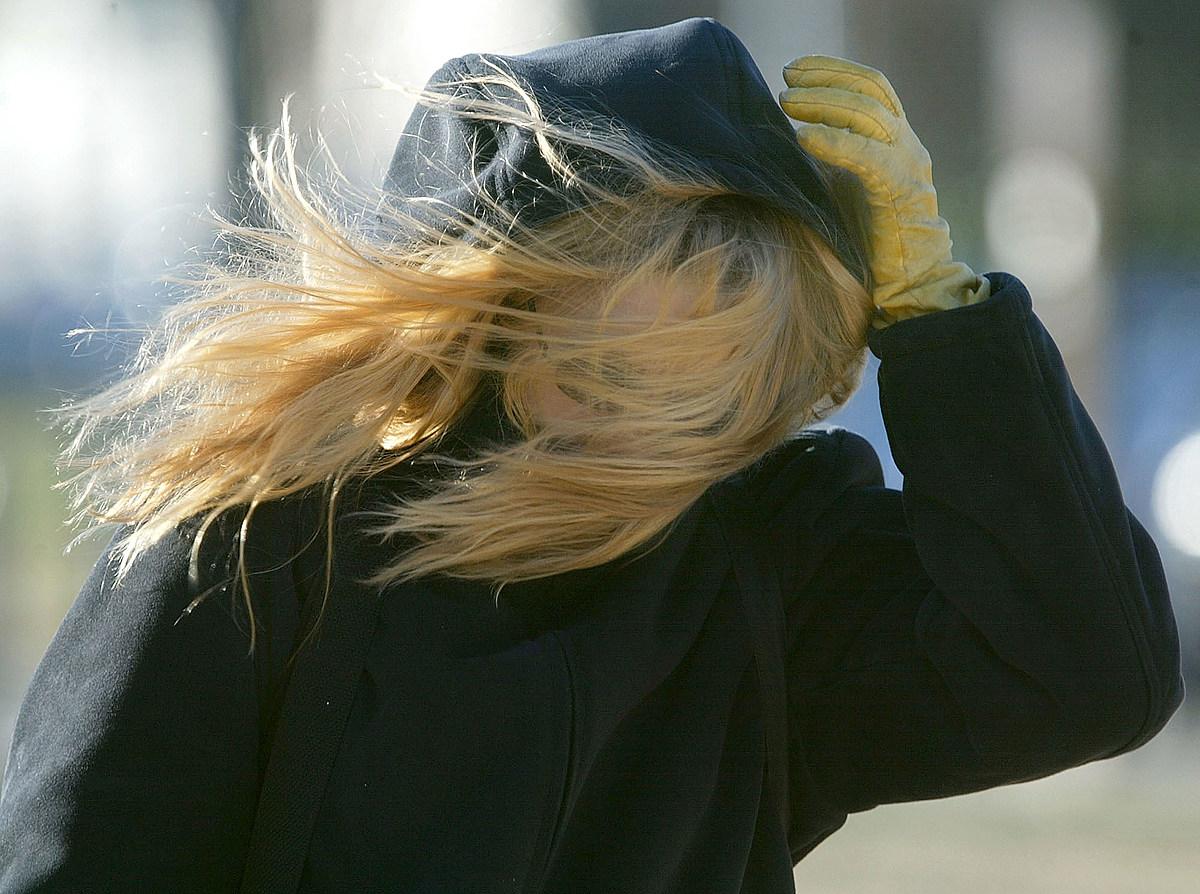 На выходных в Алтайском крае немного потеплеет, однако подует сильный ветер