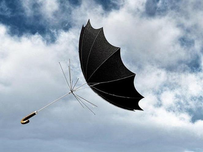 Штормовой ветер сохранится в Алтайском крае 28 и 29 октября