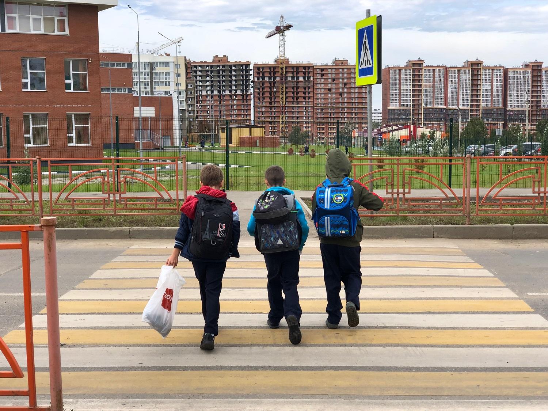 Безопасность школьных маршрутов обсудят на площадке ОНФ в Алтайском крае