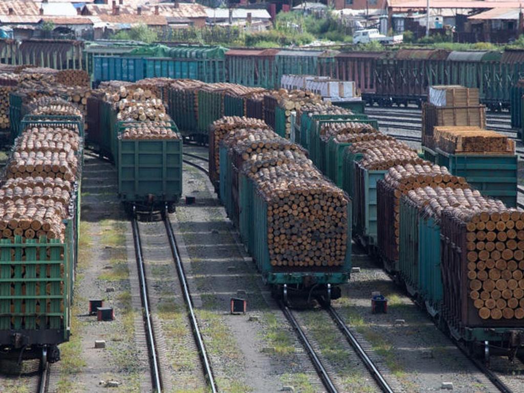 900 тыс. кубометров лесоматериалов экспортировано из Алтайского края