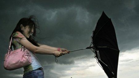Синоптики прогнозируют наАлтае жару инебольшие дожди