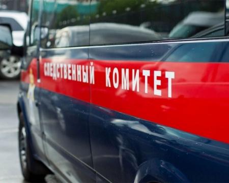 ВХабарском районе утонула 5-летняя девочка