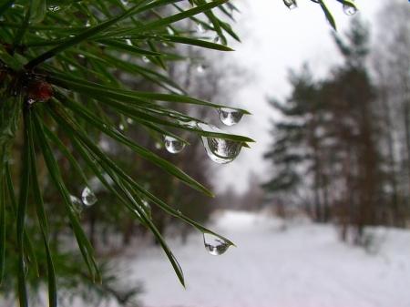 Сегодня вАлтайском крае синоптики ожидают потепление до0°C